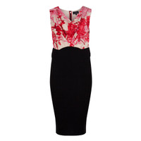 Ted Baker Dega Floral Etchings Cowl Neck Dress at masdings.com