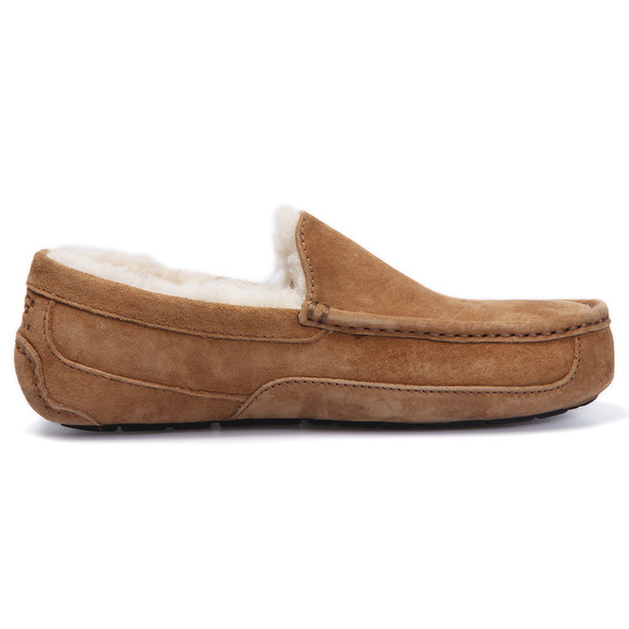Ugg Mens Brown Ascot Slipper main image