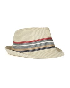 Barbour Lifestyle Mens Beige Tain Stripe Trilby