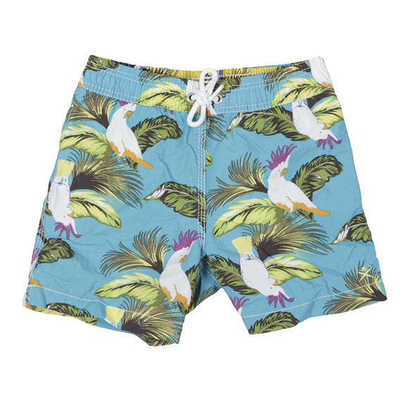 Hackett Boys Blue Tropical Bird Swim Short main image