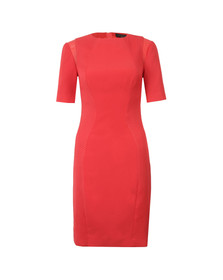 Ted Baker Womens Orange Abrial Mesh Panel Bodycon Dress