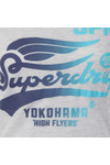 Superdry Womens Grey High Flyers Tee