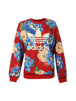C-Sweater