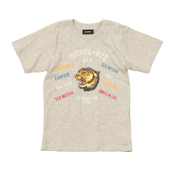 Diesel Boys Grey Boys Tavi T Shirt main image