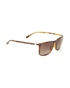 Boss Mens Brown 0665 Sunglasses
