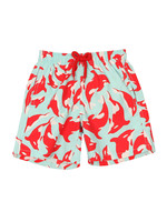 Classic Style Dolphin Swim Shorts