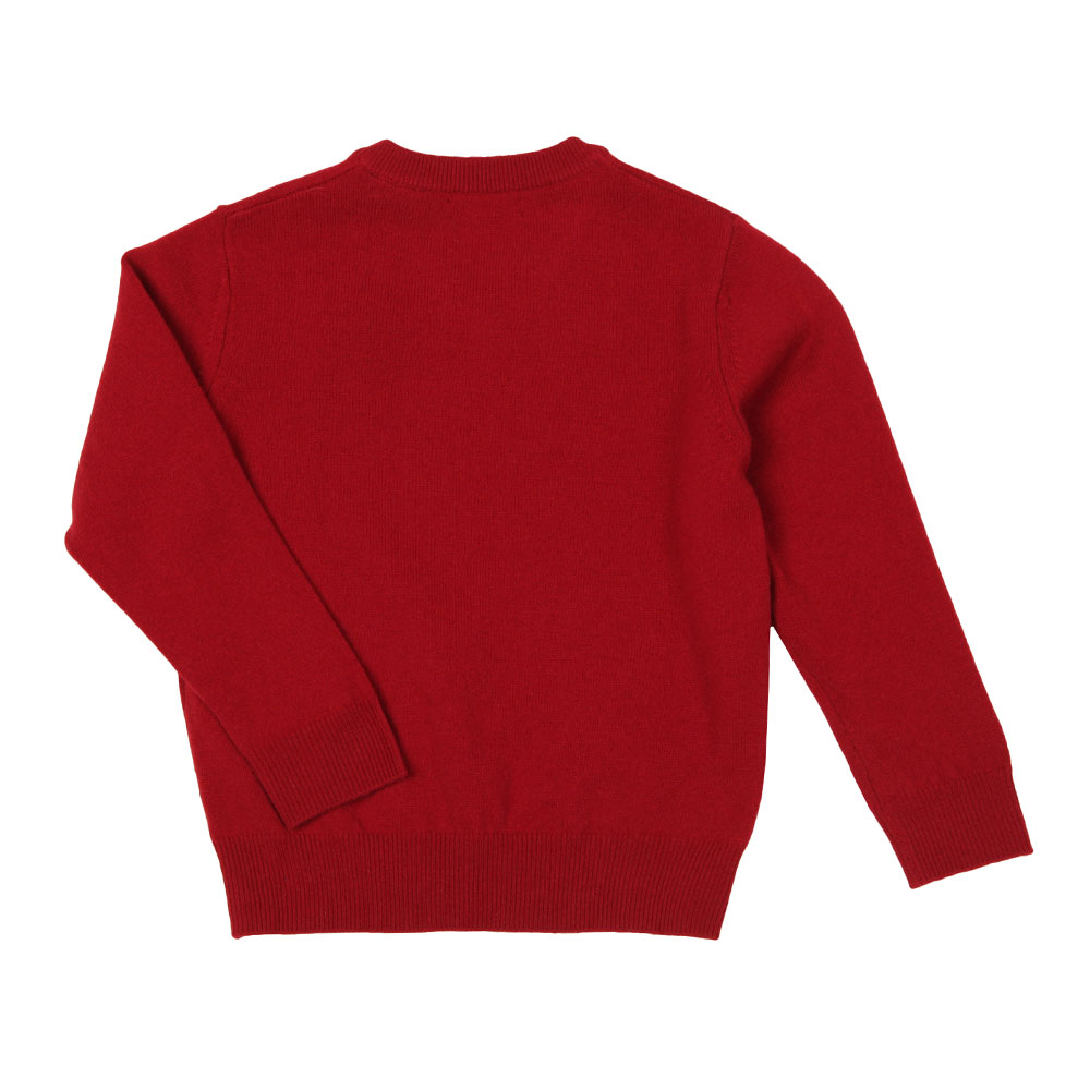 Superfine Lambswool V Neck Jumper main image