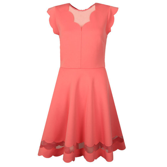Ted Baker Womens Pink Sharlot Mesh Paneled Scallop Dress main image