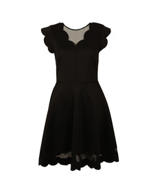 Ted Baker Womens Black Mesh Paneled Scallop Dress