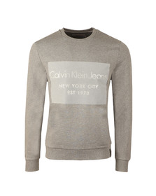 Calvin Klein Mens Grey L/S Hayto Crew Sweat