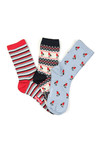 Barbour Lifestyle Womens Multicoloured Robin Christmas Sock Giftbox