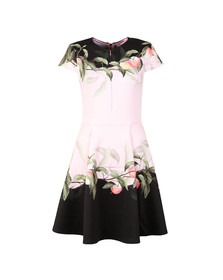 Ted Baker Womens Pink Antana Peach Blossom Jersey Skater Dress