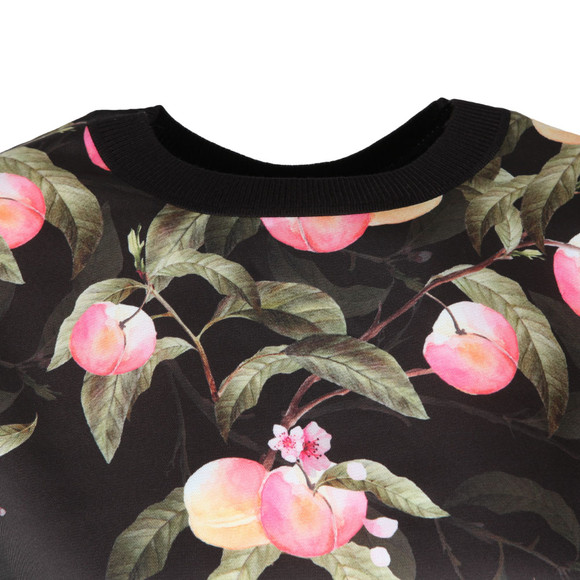 Ted Baker Womens Black Anthya Peach Blossom Woven Front Jumper main image