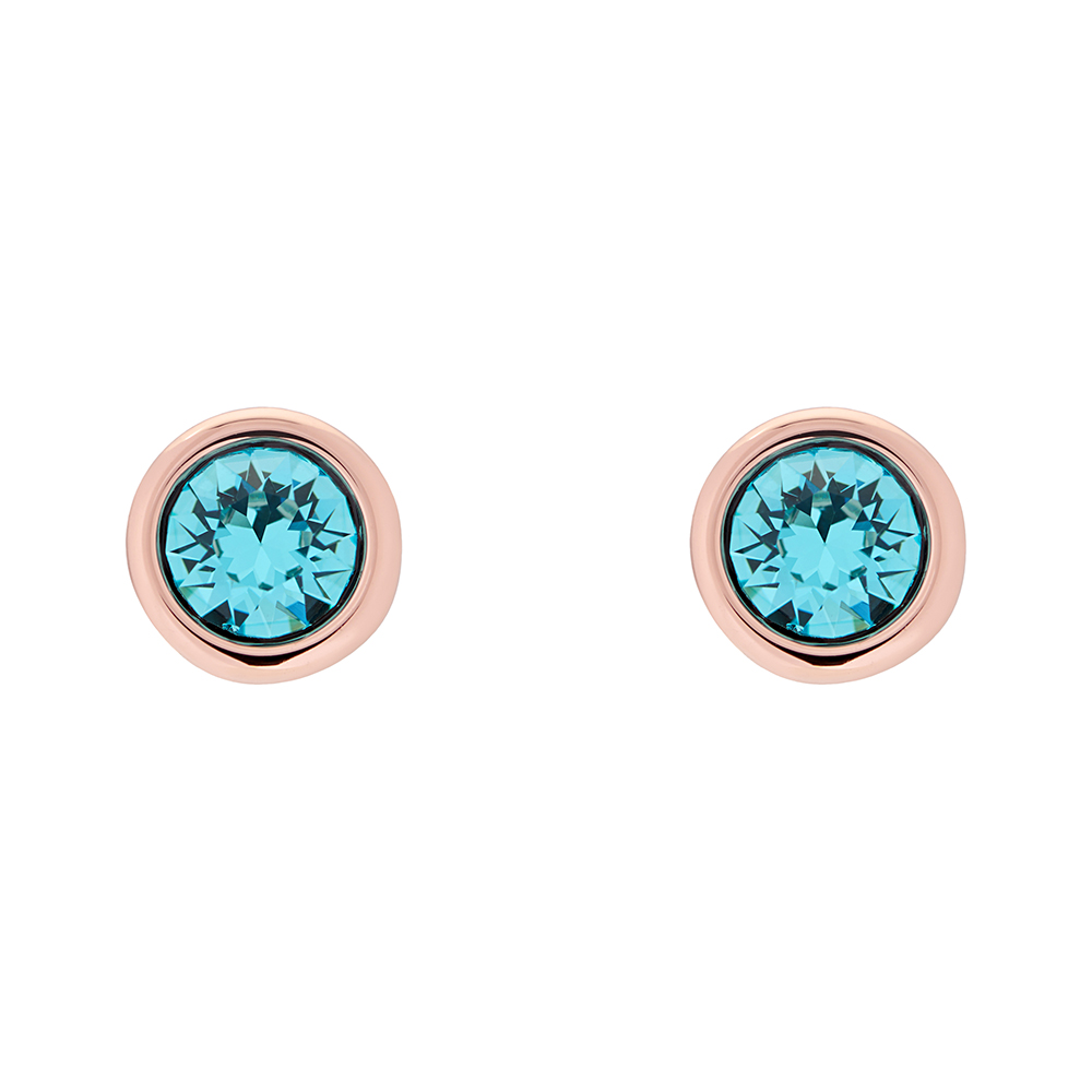 Turquoise/Rose Gold Sinaa Crystal Stud Earrings main image