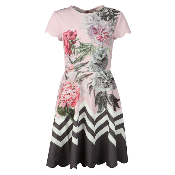Ted Baker Womens Pink Haiilie Palace Ruffle Skater Dress main image