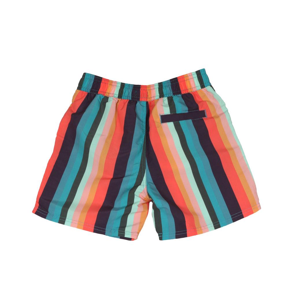 Multi Stripe Swim Shorts main image