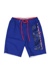 Superdry Mens Blue Boardshort