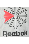 Reebok Mens Grey F GR Tee
