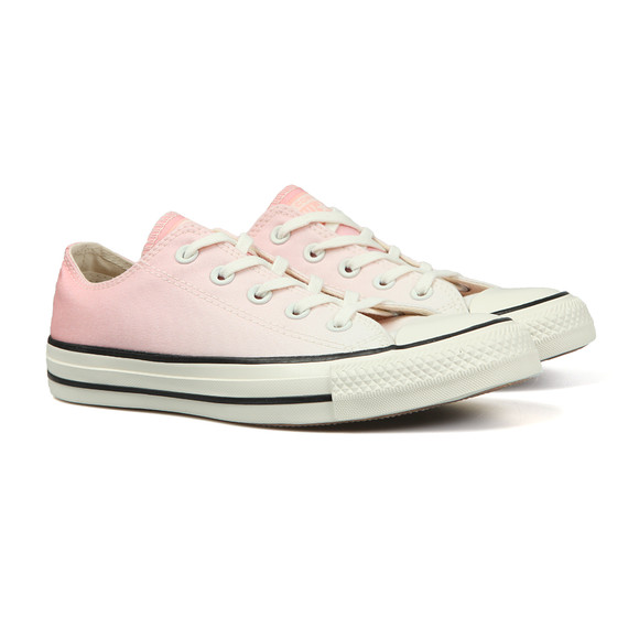 Converse Womens Pink All Star Ombre Ox main image
