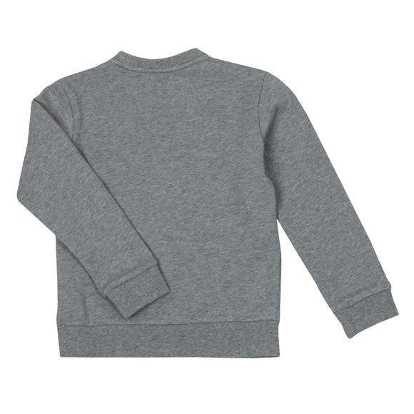 Emporio Armani Boys Grey Boys Large Logo Sweatshirt