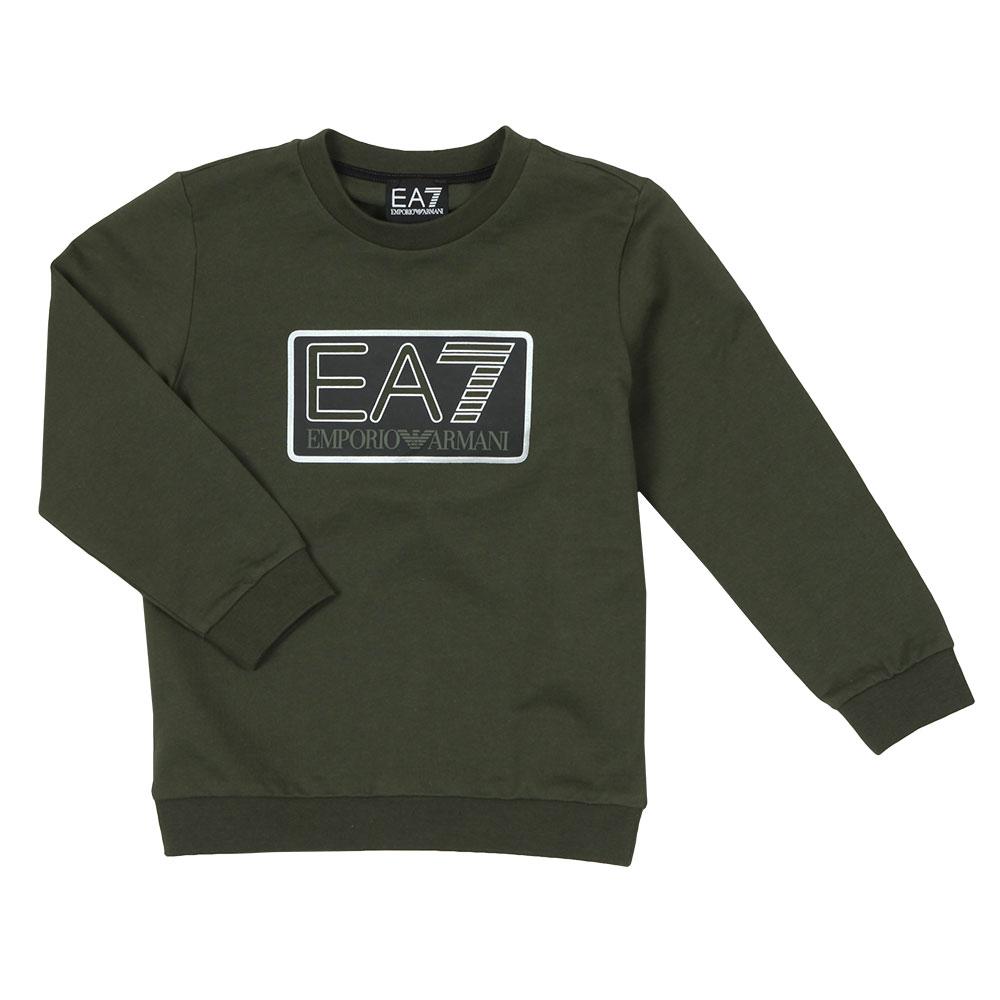Large Box Logo Sweatshirt main image