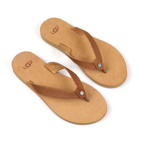 Ugg Womens Brown Tawney Flip Flop main image