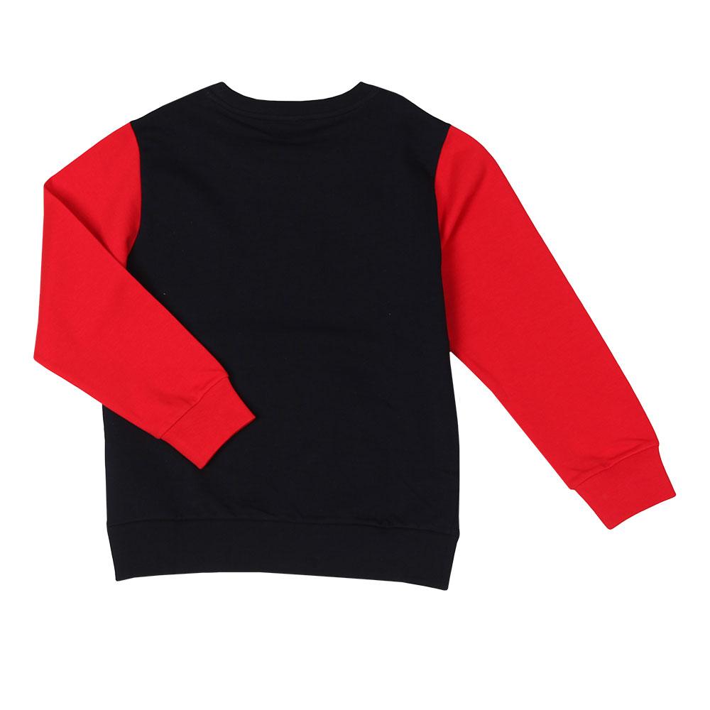 Colour Block Logo Sweatshirt main image