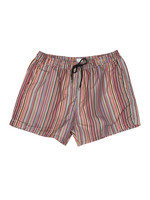 Signature Stripe Swim Shorts