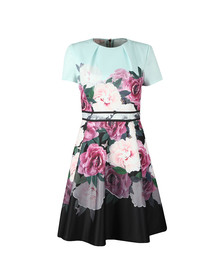 Ted Baker Womens Green Wilmana Magnificent Skater Dress