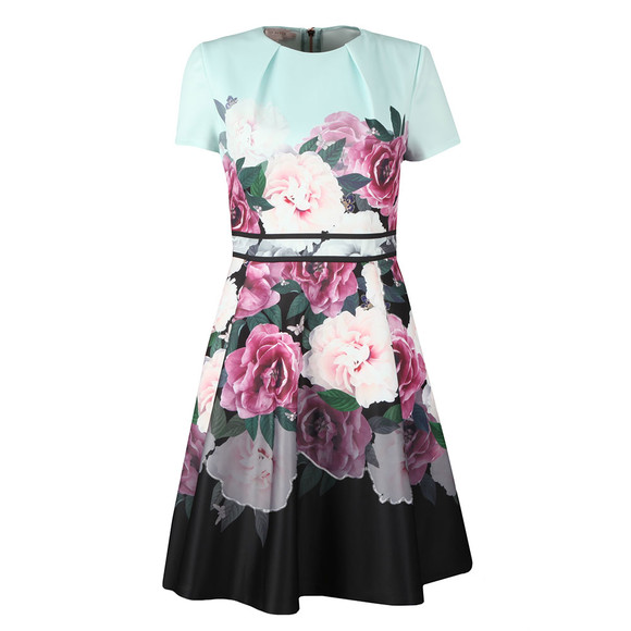 Ted Baker Womens Green Wilmana Magnificent Skater Dress main image