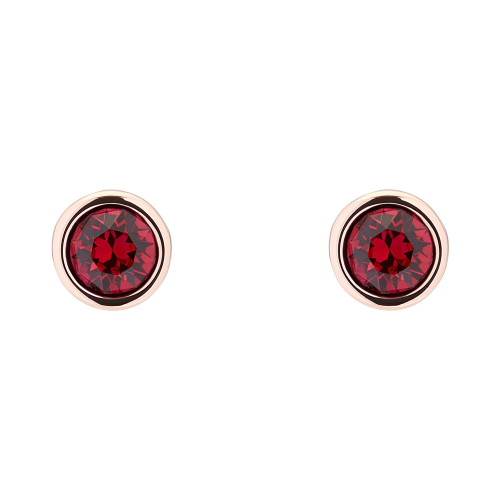 Sinaa Crystal Stud Earrings main image