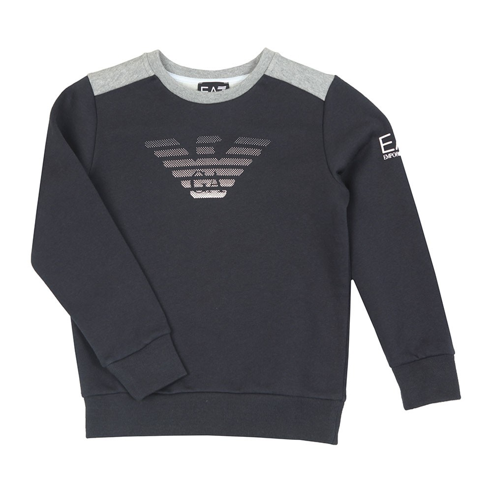 Boys Fade Eagle Sweatshirt main image