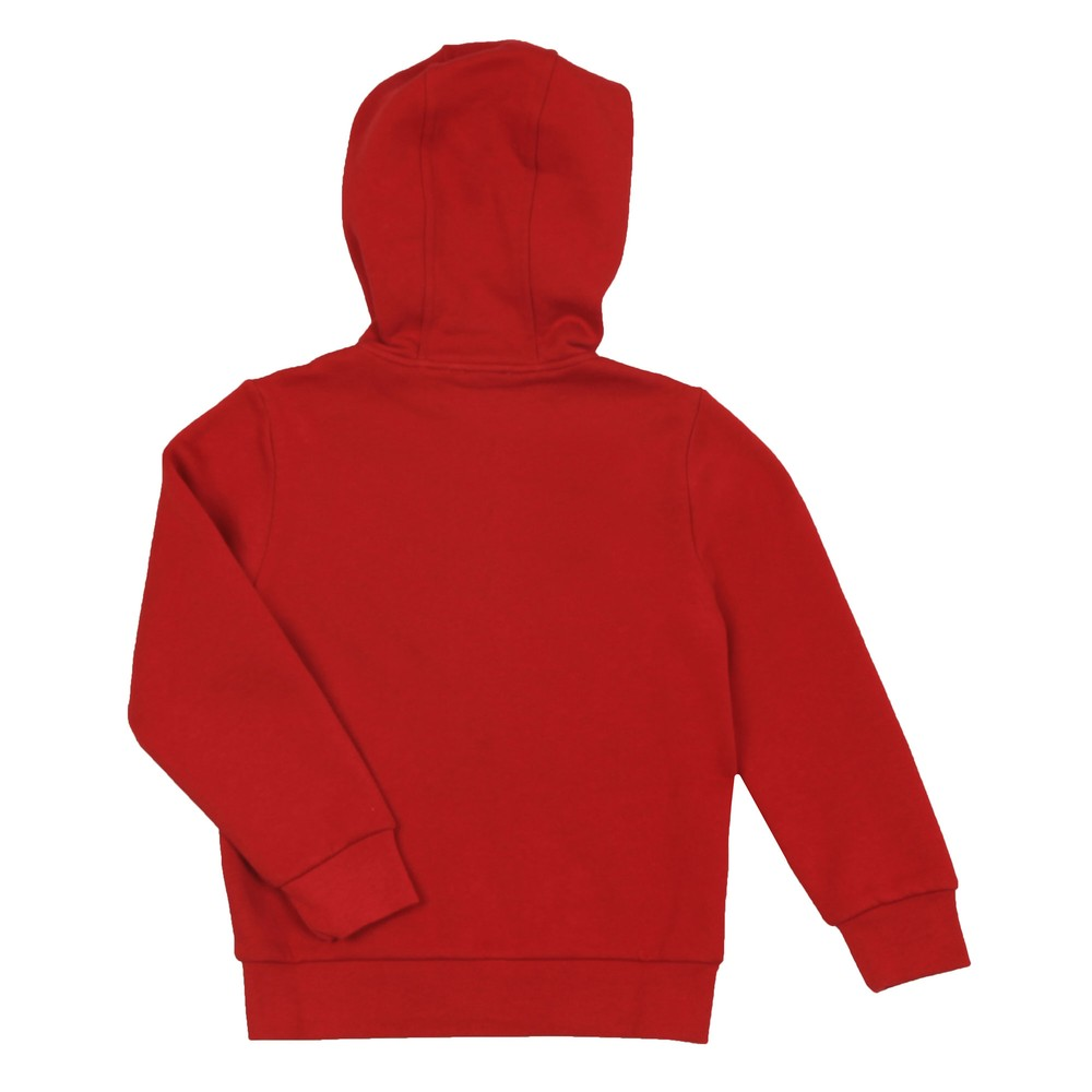 Small Logo Fleece Hoody main image