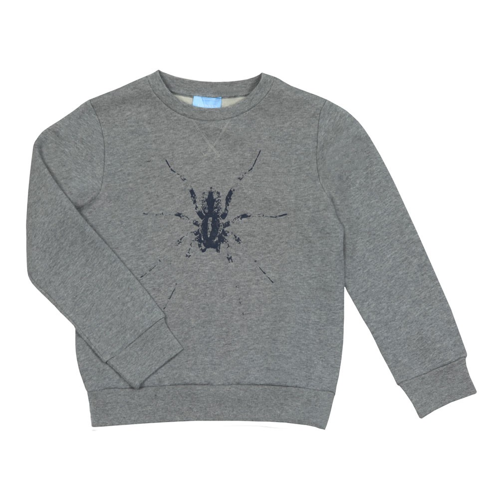 Spider Sweatshirt main image