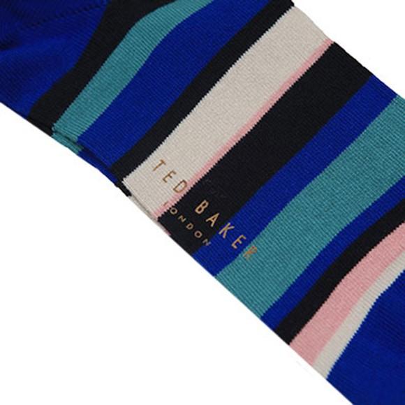 Ted Baker Mens Blue Multi Stripe Sock main image