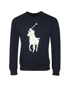 Polo Ralph Lauren Mens Blue Tonal Terry Sweatshirt