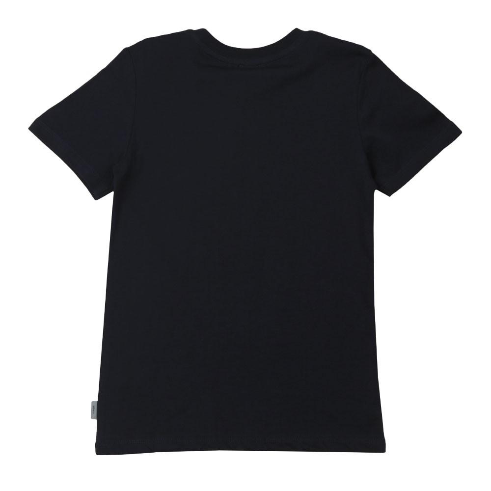Amolo Zebra T-Shirt main image