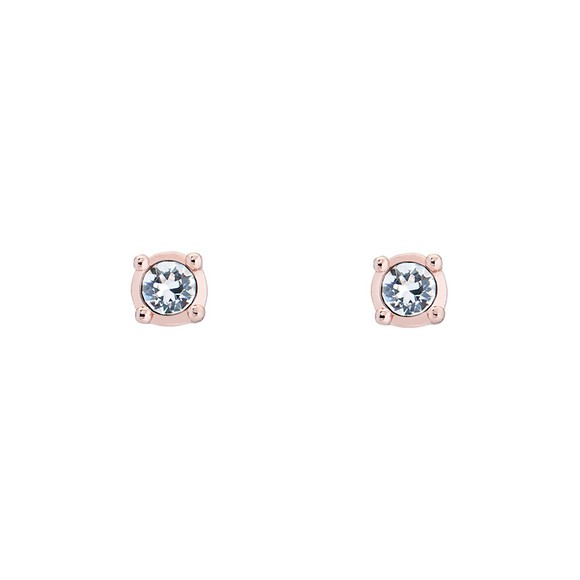 Ted Baker Womens Pink Nenna Nano Sparkle Stud Earring main image