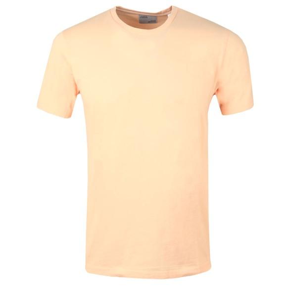 Colorful Standard Mens Orange Organic T-Shirt