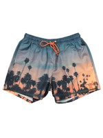 Springfish Patterned Swim Short