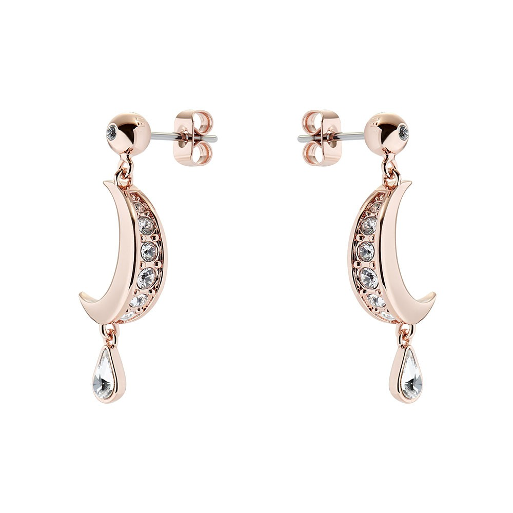 Mertal Crescent Moon Drop Earring main image