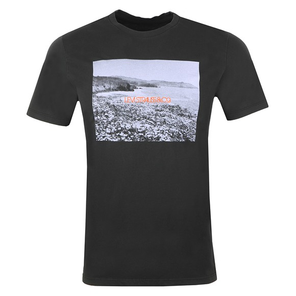 Levi's ® Mens Black Picture Logo T-Shirt