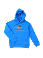 Archive Shield Hoody