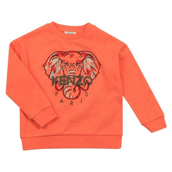 Kenzo Kids Boys Orange Elephant Logo Sweatshirt