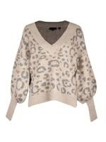 Alicina Animal Jacquard V Neck Sweater