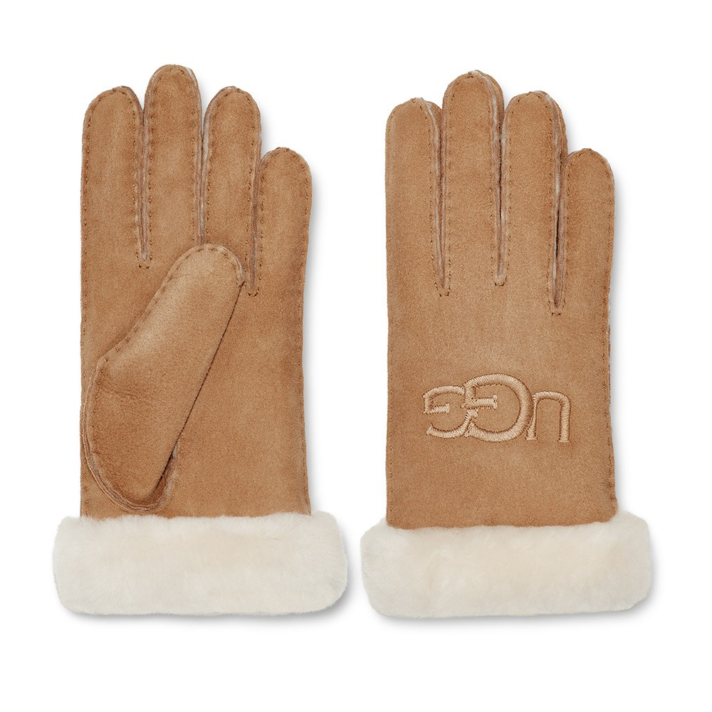 Shearling Embroidered Glove main image