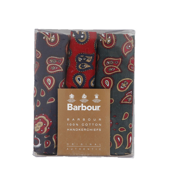 Barbour Lifestyle Mens Multicoloured Paisley Multi Handkerchief